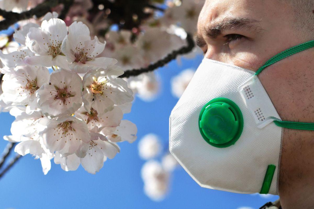Влияет ли температура окружающей среды на коронавирус? Результаты исследований