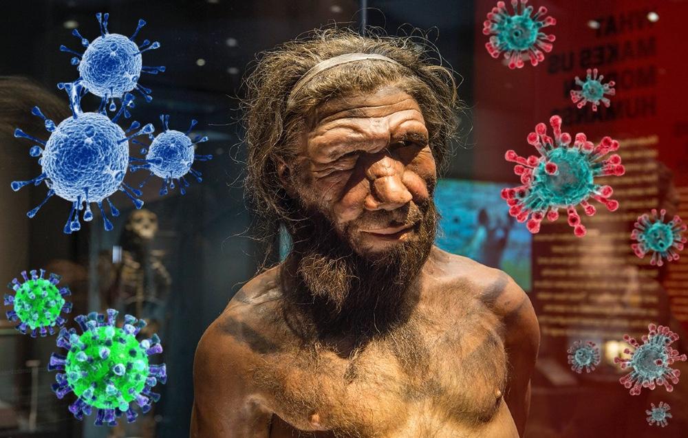 Ген неандертальца повышает риск развития тяжелого коронавируса
